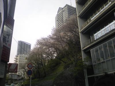 20100412studio