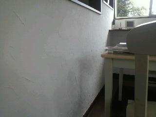 P1000541.jpg