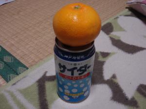 020_convert_20111115233157.jpg