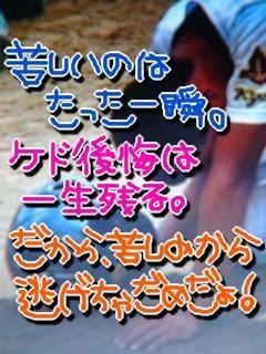 8gfMu6_480.jpg