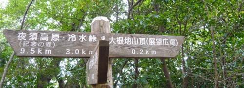s-oonetiyama 13