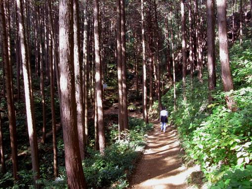 Hiwadayama01.jpg