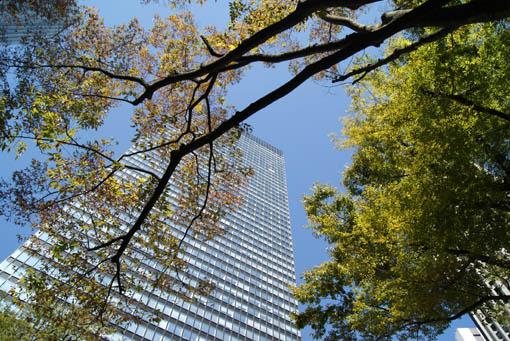 Shinjuku05.jpg