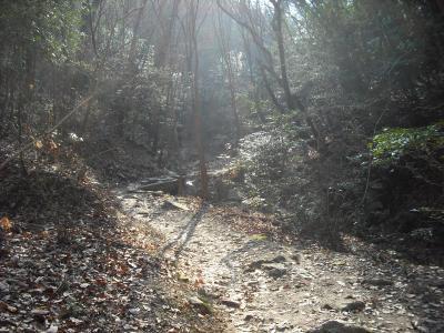 菊水からの下り道