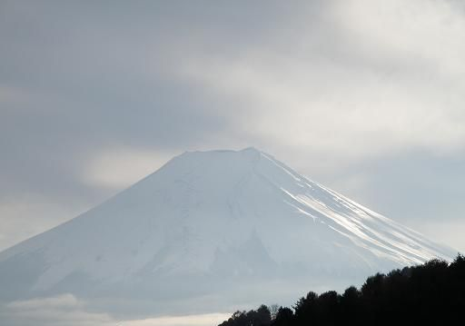 fuji1124.jpg