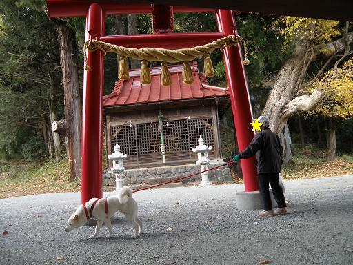 fujinokami1.jpg
