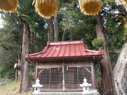 fujinokami2.jpg