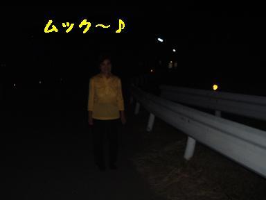 kowaikao2.jpg