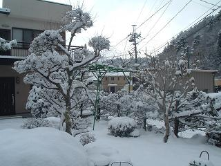 yuki2181.jpg