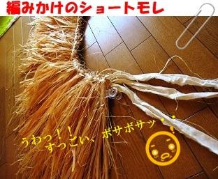 ショートモレ 編みかけ