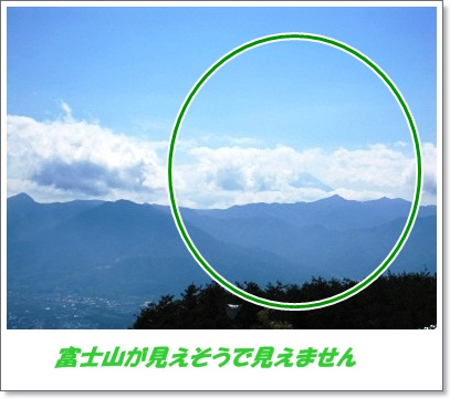 見えそうで見えない富士山
