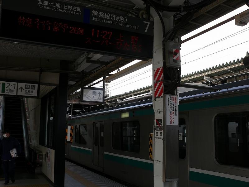 P1310107.jpg