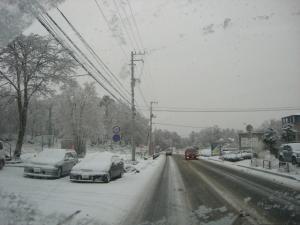2010 2月g1t@0 010