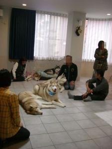 2010 3月ロシェ邸 026 8