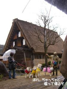 2010 3月ロシェ邸 065 1