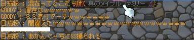 Maple110814_115936.jpg