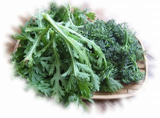 菊菜とブロコッリー