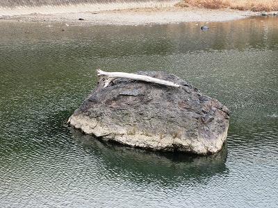 川の中のオブジェ