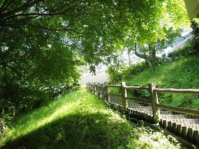 ささやま荘への階段