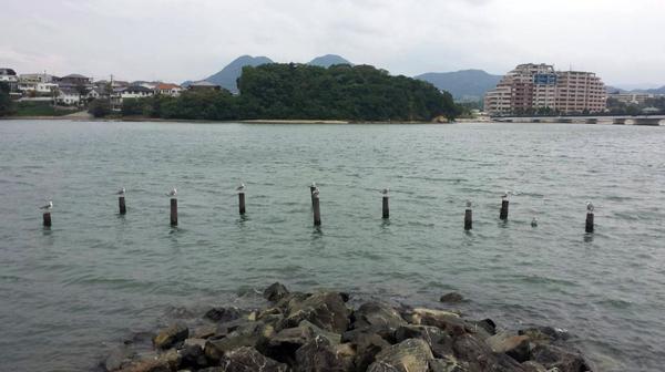 20141012香椎浜