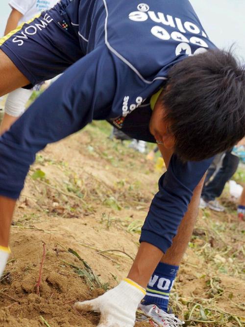 20141012芋掘りi7