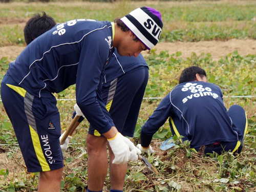 20141012芋掘りM3