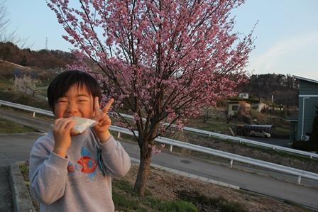 花見しながら食べると