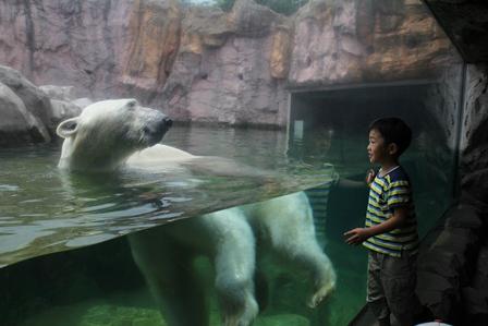 動物園に行ってきました