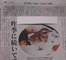 夕刊 - コピー
