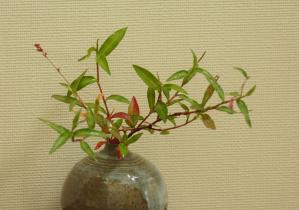 DSC05879イヌタデ紅葉花瓶