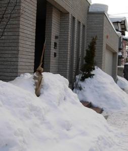 2011_0122一眼0002大雪1