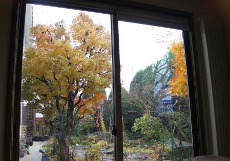 DSC01656和室東窓