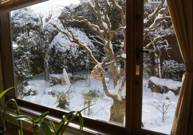 DSC03306 - コピー雪の降った日