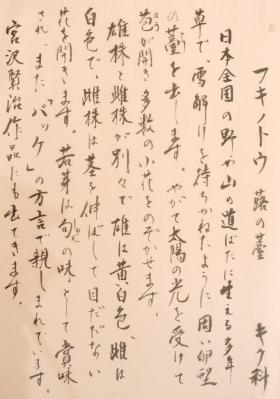 DSC03572書フキノトウ1
