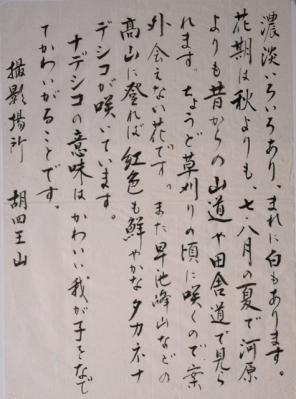 DSC04321書カワラナデシコ左