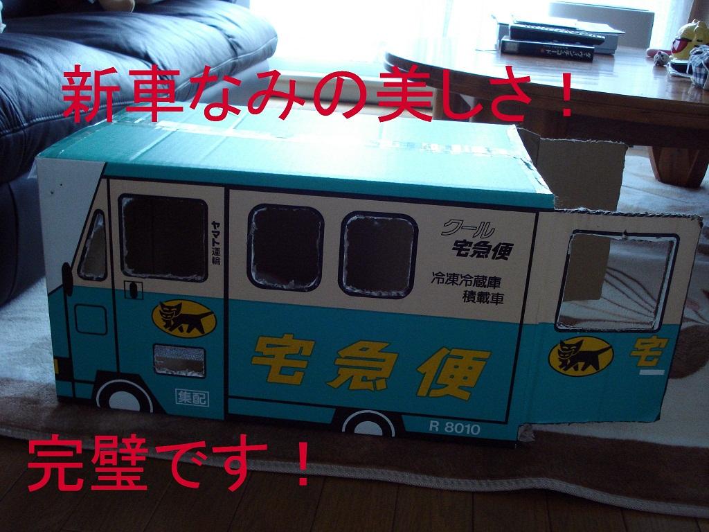 DSC08772.jpg