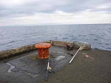 2011.12.28_29 利島 033.JPG