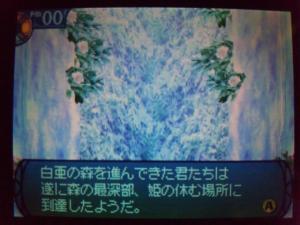SH3D0498_convert_20110419230917.jpg