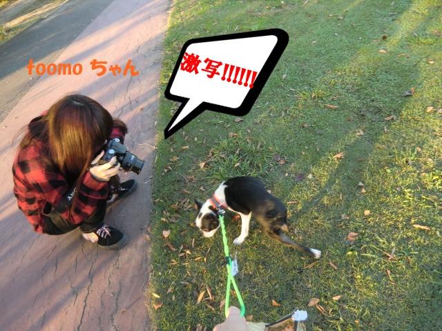 2010_1106_154659-CIMG2234.jpg