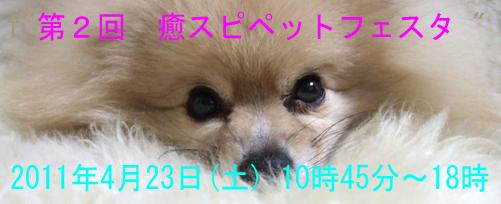 20110219111858c67.jpg