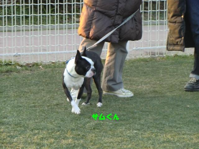 2011_0109_161929-CIMG3351.jpg