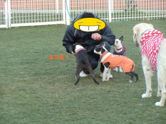 2011_0109_164400-CIMG3368.jpg