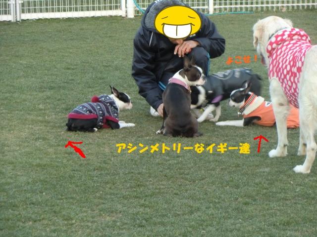 2011_0109_164416-CIMG3369.jpg