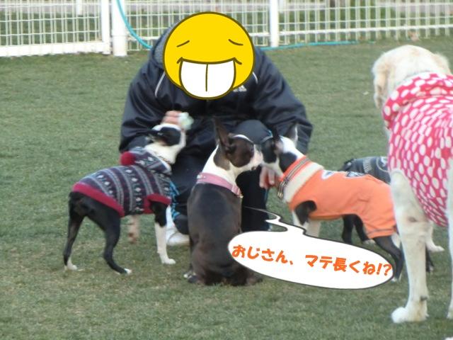 2011_0109_164423-CIMG3370.jpg