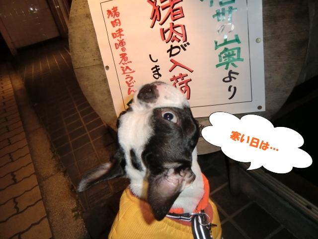 2011_0113_193357-CIMG3414.jpg