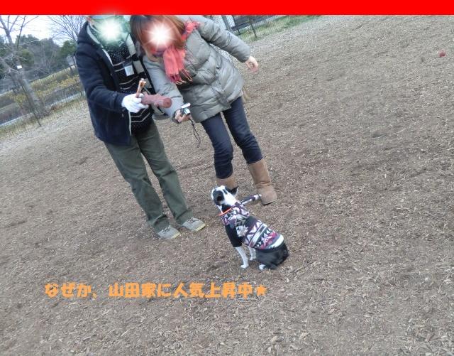 2011_0115_145416-CIMG3479.jpg