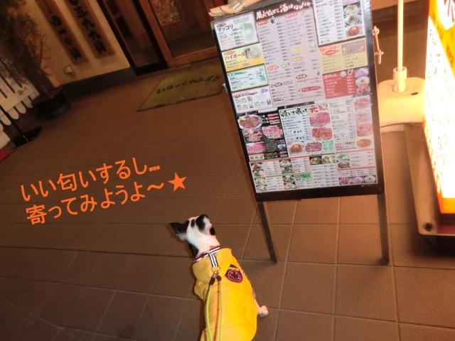 2011_0120_195949-CIMG3522.jpg
