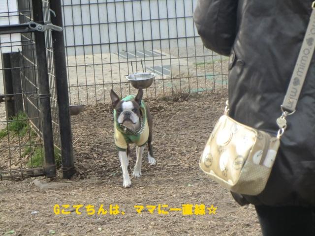 2011_0205_141911-CIMG3736.jpg