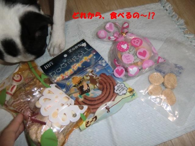 2011_0205_225652-CIMG3802.jpg