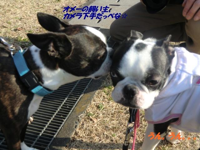 2011_0221_152808-CIMG3966.jpg